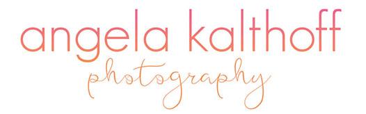 Minnesota Newborn Baby Child Photographer logo